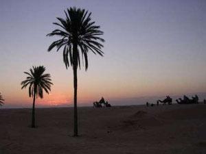 Anochecer en el Sáhara