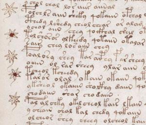 El famoso manuscrito Voynich