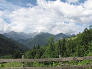 Blick vom Paulitschsattel auf die schneebedeckten Berge