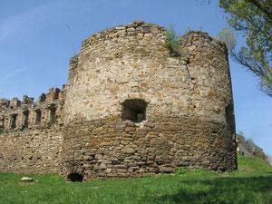 Вежа замку.