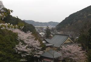 こちらは静岡増善寺様 今川氏親廟より安倍川方面を望む