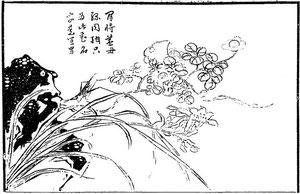Fleur de ye-ho