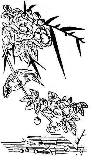 Shin-Lou-Ti (Henri Bertreux), L'âme chinoise