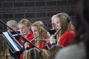 orkest breiberger muzikanten