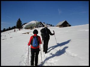 Knapp 1400 Meter hoch liegt die Bärenhauptalm. Wenig später erreicht der Wanderer problemlos den Hirschhörnl-Gipfel, der im Hintergrund schon gut zu sehen ist.