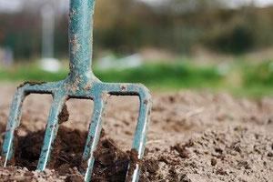 Gartengeräte / Gartenwerkzeug