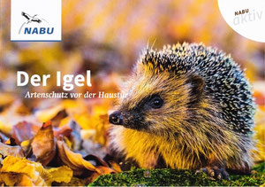 Igel Winterschlaf Frühling Winterruhe Rasenroboter Freischneider Verletzung verletzt NABU Düren
