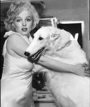Marilyn & Barsoi