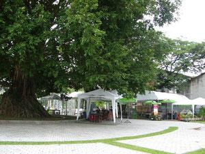 アマリリンカム前の屋外カフェ