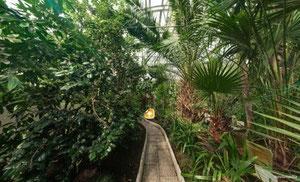 Ботанический сад-институт. Фото с сайта: http://www.pabgi.ru/excursion.html