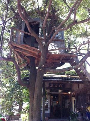 佐賀県諸富町いわい家具