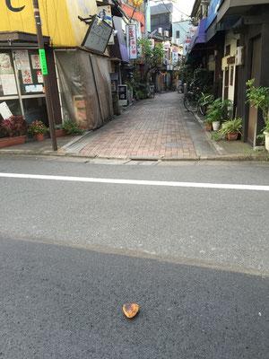 辰巳新道のそばの道路に焼きおにぎりが・・