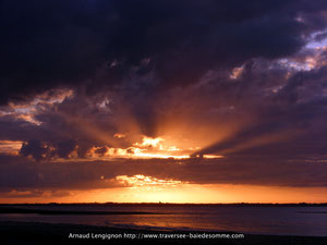 Sortie nature découverte de la baie de somme, des phoques, des oiseaux....organisée par Découvrons la Baie de Somme