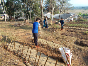 自分たちで作った堆肥を畑に使っている。