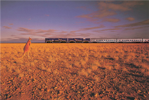The Indian Pacific, Great Southern Railsways