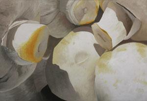 Champigons-03    /  huile sur toile marouflée /    40 x 58