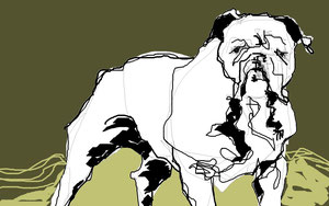 Bulldog Final, digital, 2013