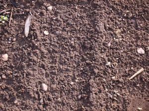 Bild 1: Bodenerosion