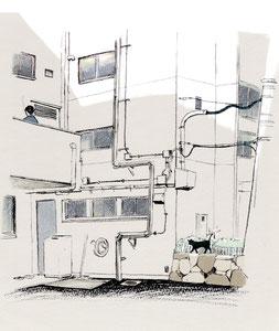 猫のいる会社/2017.04