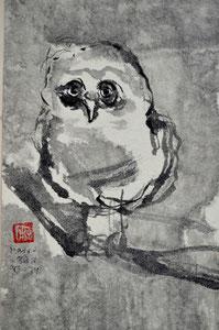 Junge Eule/1979/12,2x20,2cm/ ID: R106-2232,1