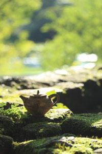 茶壺と柿田川湧水郡