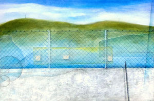 Layered Landscape -FENCEの向こうのフクシマ- W410×D273㎜