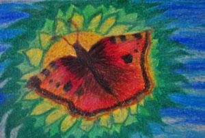 """""""Schmetterling Kleiner Fuchs """"                gemalt in Öl Kreide                     30 cm / 21 cm   45,-€"""