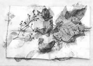 M.Uさん作 鉛筆による細密描写