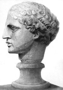 H.Hさん作 石膏像(ラボルト)デッサン