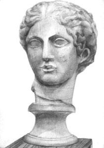 Y.Hさん作 石膏像(ラボルト)デッサン
