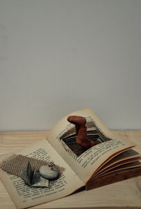 le lecteur anonyme : être plongé dans un livre, vendu