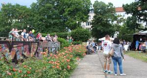 Blühende Rosen am Stierbrunnen mit Zuschauern vor der Bühne, Fest Bötzow-Kiez. Foto: Helga Karl