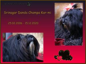 Srinagar Danda Champa Kar-mi