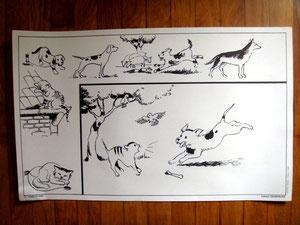 Chien et chat - Affiches pédagogiques d'école vintage