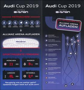 Audi, 2019, Audi-Cup 'e-tron'