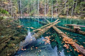 Kärnten, kleiner Waldsee (Fotodesign-Wunderlich)