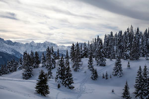 Kärnten, Winter am Dobratsch (Fotodesign-Wunderlich)