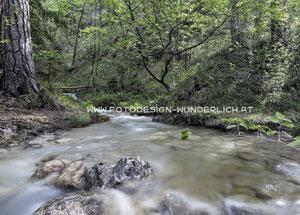 Kärnten, Bach im Wald (Fotodesign-Wunderlich)