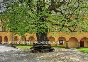 Kärnten, Millstatt, Stift Millstatt (Fotodesign-Wunderlich)