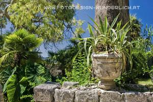 Arboretum Trsteno (Fotodesign-Wunderlich)