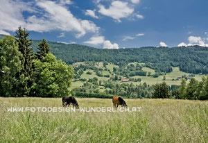 Kärnten, Nockberge  (Fotodesign-Wunderlich)