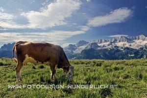 Montasch - Almen (Fotodesign-Wunderlich)