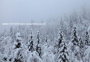 Winter in den Alpen (Fotodesign-Wunderlich)