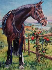 2019 Bestellung, verkauft, 30 x 40 cm, Acryl auf Keilrahmen. Preisbeispiel 243 €