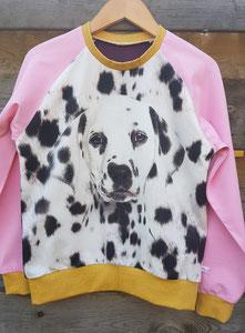 Voor: Longsleeve Dalmatier, maat 140/146 op voorraad