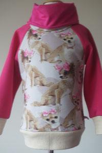 Voor: Sweater Chihuahua, maat 98/104 op voorraad