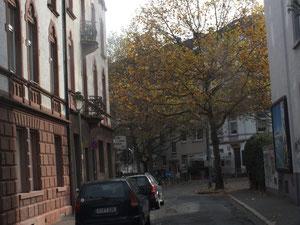 Eichwaldstraße