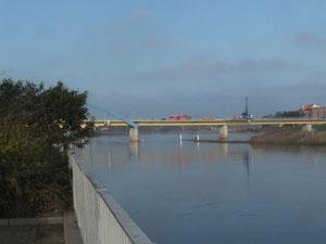 Oderufer, mit Blick auf die Brücke nach Slubicer (Polen)