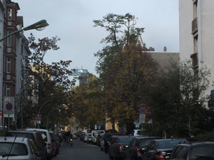 Berger Straße, Blick in die Bornheimer Landstraße