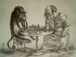 Der Affe hat gezogen
